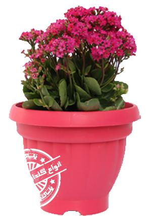 گلدان پلاستیکی کلاسیک