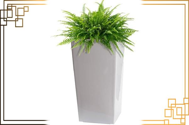 گلدان پلاستیکی بلند